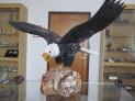 Orel z onyxu na podstavci 35 cm - Peru.