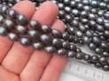 Říční perly černé 10x7/8 mm šňůra perel č.12